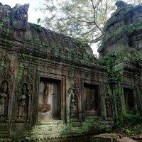 Камбоджа. Храм Та-Пром. XII в. :: Rafael
