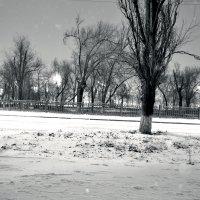 Зима пришла :: Алекс Шенгела