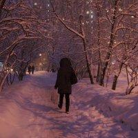 Снежный вечер :: demyanikita