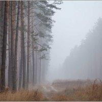 Синий туман :: Елена Ерошевич