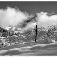 Снегозадержание :: Сергей Бережко