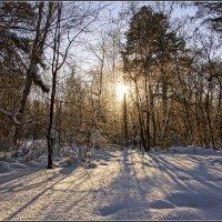 15.День зимнего солнцестояния---07 :: Владимир Холодный