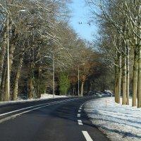 road :: Zinaida Belaniuk