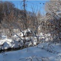 В лесопарке зимой... :: Тамара (st.tamara)