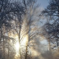 Мороз! :: Валерия заноска