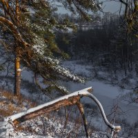 подмосковье .зима. :: юрий макаров