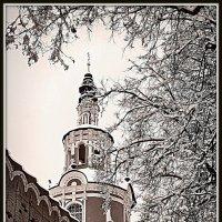 Надвратная церковь Донского монастыря. Москва :: Михаил Малец