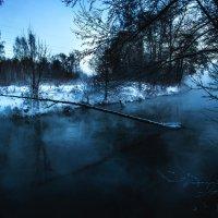 Таинственное утро в Красково :: Лев Shuclo