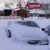 В Майами снежно!!! :: Александр Скамо