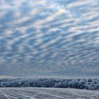 Зима :: Николай Юшников
