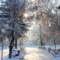 мороз и солнце :: Сергей Савич.