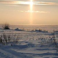 Снежное безмолвие :: Николай Танаев