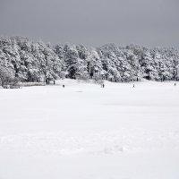 Зима :: Николай Танаев