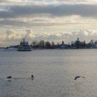 Хельсинки :: Людмила