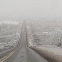 Туман :: Н.Н. Баранова