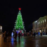 С Наступающим Новым годом!  Желаю всем здоровья, творческих успехов! :: Максим Баранцев