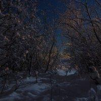 Лунный пейзаж :: Наталья Ерёменко