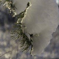 Снег :: Владимир Орлов