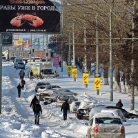 позаметало стежки-дорожки :: Александр Корчемный