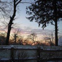 """""""Морозное утро, морозный рассвет"""" :: BoxerMak Mak"""