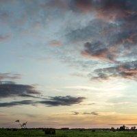Sunset 1 :: Arturs Ancans
