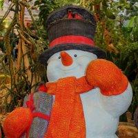 Бравый снеговичек... :: Борис Шубин