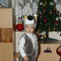 Я злой и страшный серый волк !!! ))) :: Иван Бобков