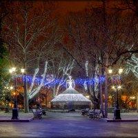 Севастополь новогодний :: Sergey Bagach