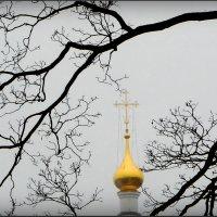 За кремлёвской стеной! :: Владимир Шошин
