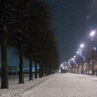 Зимний вечер :: Mary Akimova