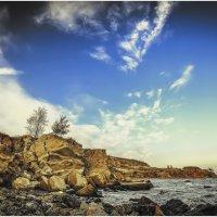 Дикие пляжи Одессы,Черное море!!! :: Александр Вивчарик