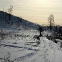 Зимний день :: Дмитрий Арсеньев