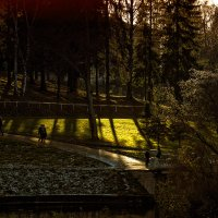 Осень в Павловске :: Сергей Политыкин