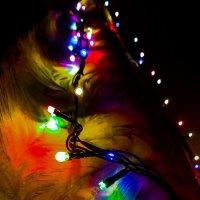 Новогоднее настроение :: Елизавета Егорова