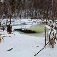 Полынья в месте слияние двух озер :: Светлана Игнатьева