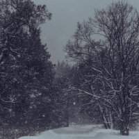 зимняя сказка :: Ирина Кулагина