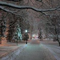 Зимняя сказка 6 :: Константин Жирнов