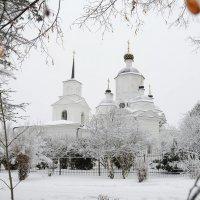 Под белым покрывалом января ... :: Андрей Куприянов