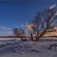 Вслед за облаками... :: Анатолий __
