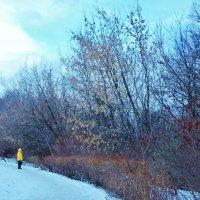 Прогулка в парке :: Светлана Лысенко