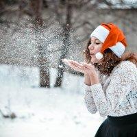 В преддверии Нового года :: Katerina