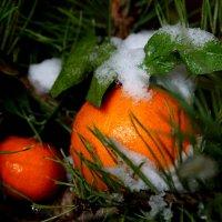 Новогоднее волшебство...... :: Ирина