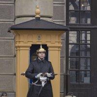 На посту у въезда в Королевский дворец :: Александр Рябчиков