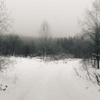 Заснеженная дорога :: Андрей Роговой