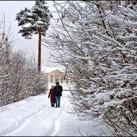 Кусковские зимние зарисовки :: Владимир