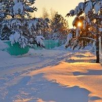 Зимнее солнце :: Елена Третьякова
