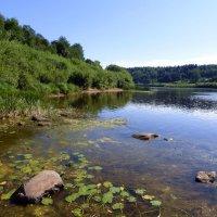 На берегу реки :: Елена Грошева