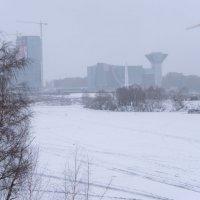 Правительство (Мособласти) в тумане. :: Яков Реймер