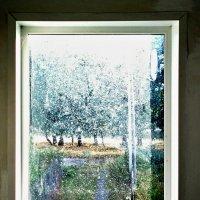 Из окна :: Николай Филоненко