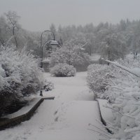 Зимний парк :: Светлана Олейник